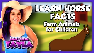Learn Horse Facts - Farm Animals for Children on Tea Time with Tayla
