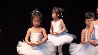 Ballet Performance 02