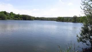 Место для рыбалки - платный ставок в с. Мельники, Чигиринский район - GPS-координаты