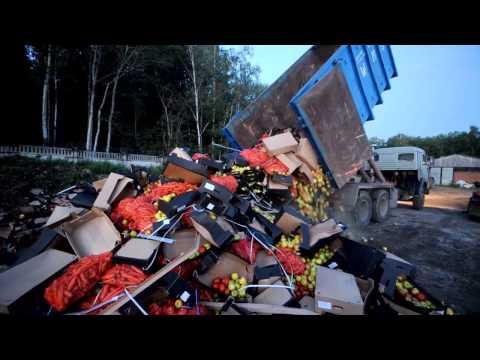 В подмосковье уничтожили 38 тонн контрабандных польских овощей и фруктов