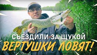 Рыбалка со спиннингом на щуку весной Вращающиеся блесны ловят