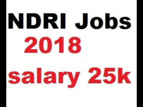 National Dairy Research Institute (NDRI) Recruitment Details // Senior Research Fellow (SRF)