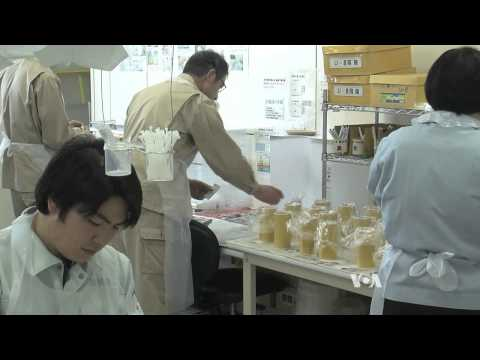 Fukushima Battles to Convince Visitors Over Food Safety