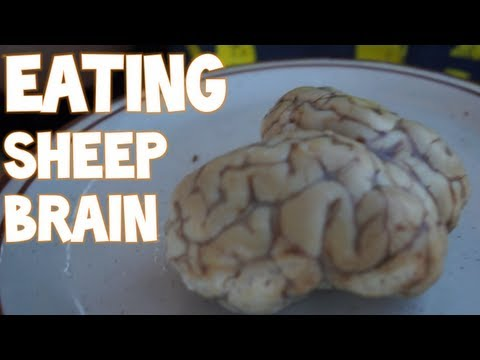 Eating An Entire Sheep's Brain in Morocco | Furious Pete