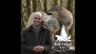 Lecture 32: Wild Animals of Ancient Ireland by Killian McLaughlin