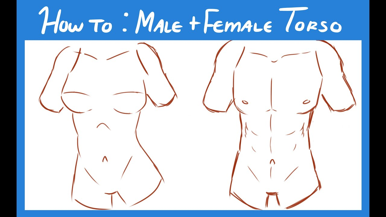 How To Draw Nude Male 66