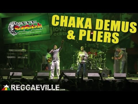 Chaka Demus & Pliers - Tease Me @ Rototom Sunsplash 2013 [August 17th]