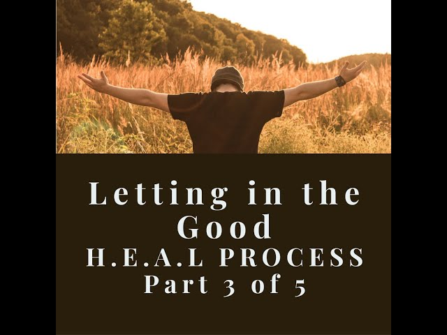 Day 3: A (Absorb) Letting in the Good-H.E.A.L. Process