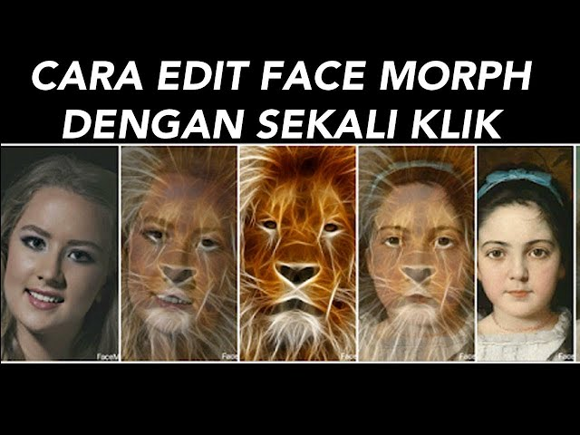 Cara Edit Foto Face Morph di Android