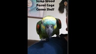 Scrap Wood Parrot Cage Corner Shelf
