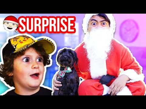 Dressing Up As Santa And Surprising My Fans!