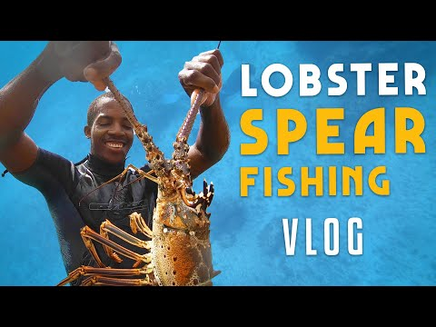 Lobster & Spearfishing VLOG! Lyssons, Jamaica