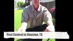 Pest Control Houston TX The Pest Guru Houston