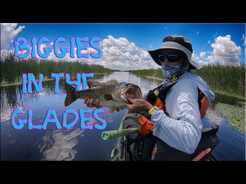 Return to the Everglades Day 1 - 8/9/19