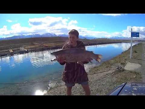Fishing Twizel Canals  EXFNZ