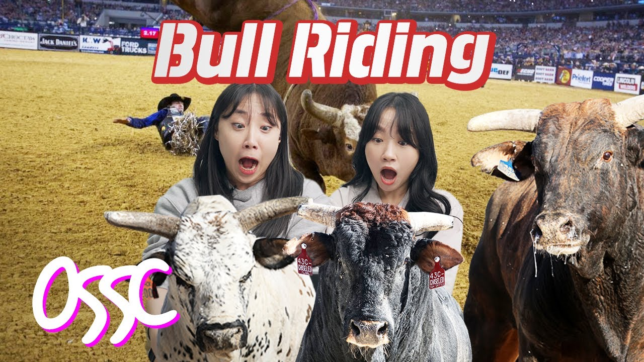 Korean Girls React To American Bull Riding For The First Time   𝙊𝙎𝙎𝘾