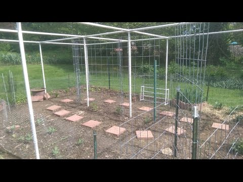 Garden Totally Enclosed by PVC, Chicken Wire, Bird Netting