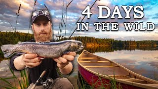 """The """"Puddle Lake"""" Expedition FULL COMPLETE SERIES (Bushcraft and Wild Edibles) - COMPLETE SERIES"""