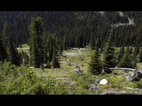 Yellow Pine, Idaho... 335 Acres ~ Land For Sale