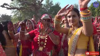 New Shekhawati Wedding Performance | Rajasthani Marriage Dance Video | Shekhawati Studio