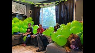 THE HULK LIFE: HAPPY BIRTHDAY HULK! HES 7!