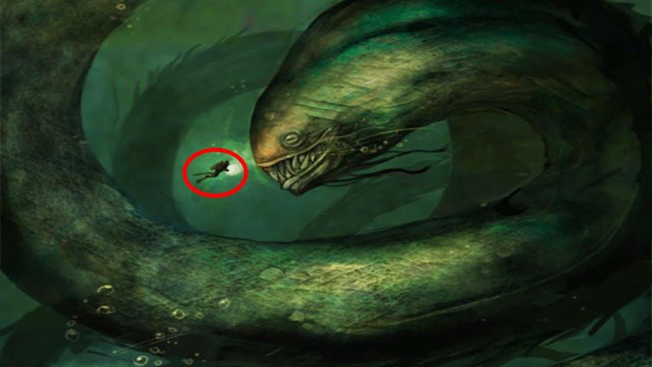 Los 5 Monstruos Marinos Más Grandes y Poderosos del Océano!!! - YouTube