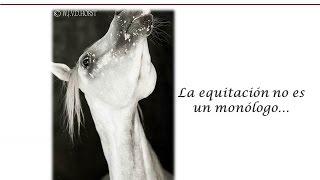 La Equitacion No Es Un Monólogo