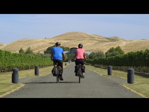 Bike shop napier new zealand
