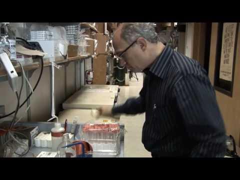 Salk Institute - Geoffrey M. Wahl