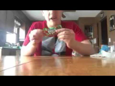 Food Review Ep. 7- Fruit Roll Up