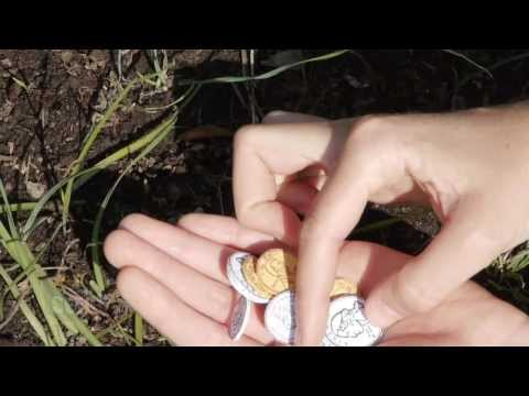 Seed Money - The Coins You Can Plant
