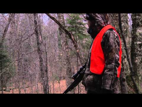 Quebec Outfitter's Camp - Boismenu Outfitters