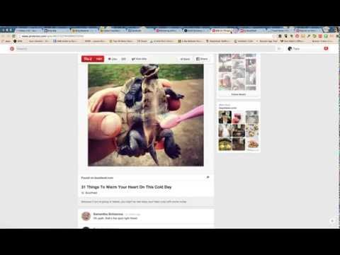 How Do Listicles Work On Social Media? Particularly Pinterest