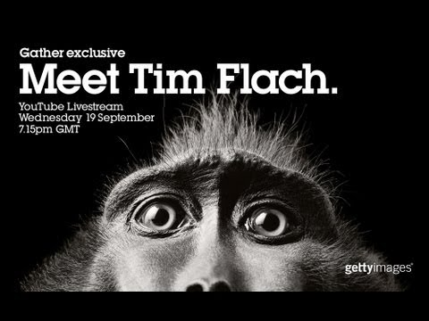 Getty Images Gather Exclusive: Meet Tim Flach