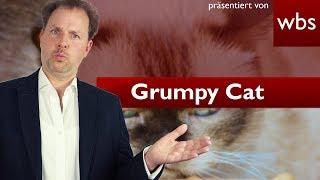 Grumpy Cat – Griesgram-Katze erhält 710.000 US-Dollar | Rechtsanwalt Christian Solmecke