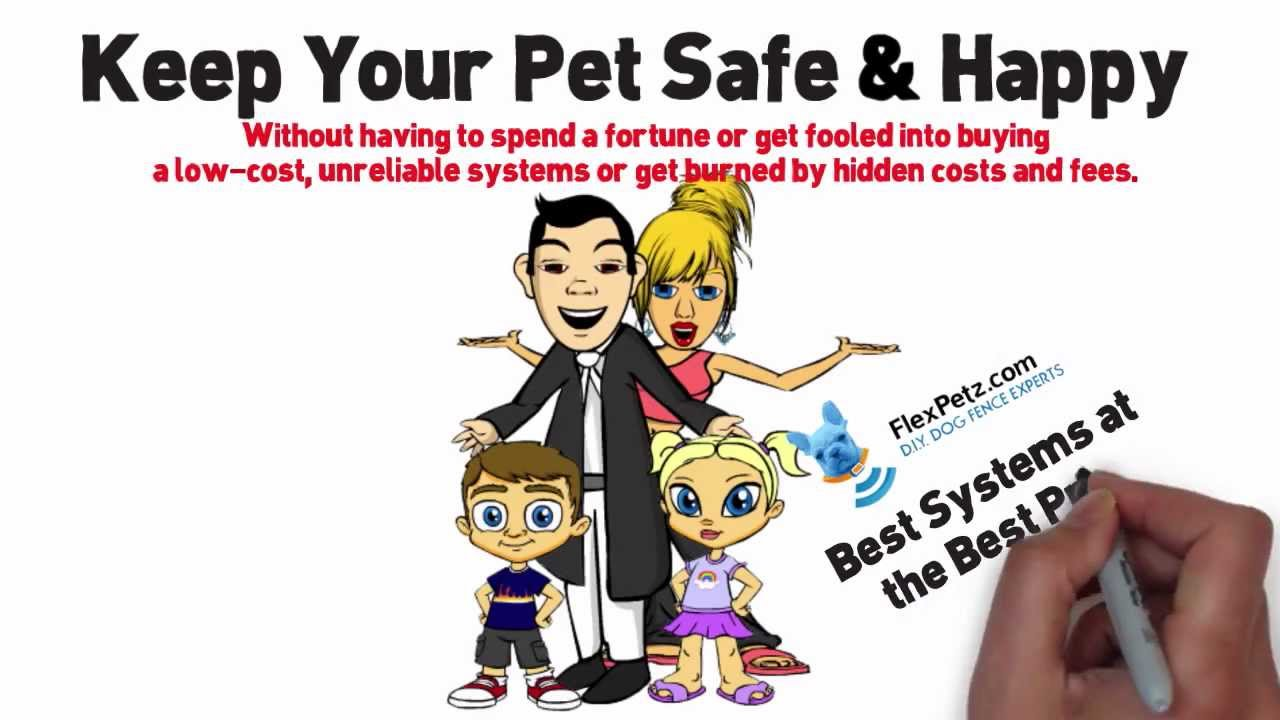 Do It Yourself Dog Fence Systems Cheaper Than Invisible Fence Brand Youtube