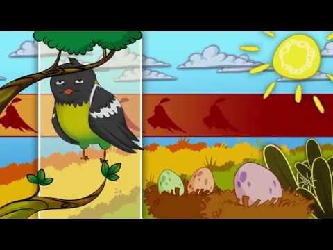 Загадки про птахів | З любов'ю до дітей