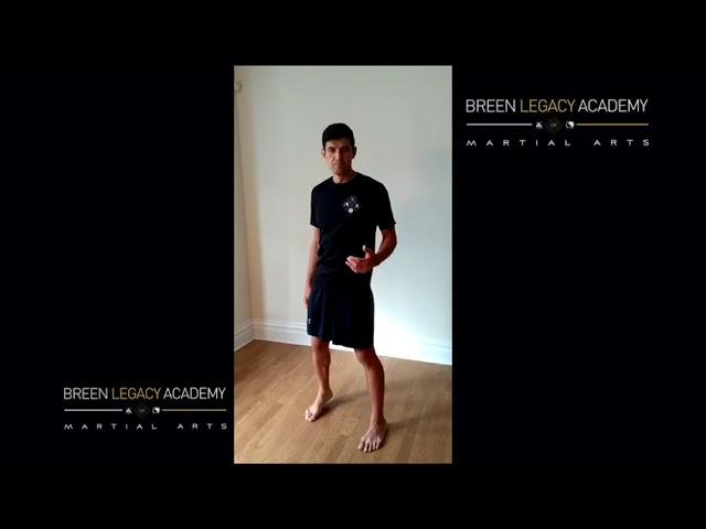 Shadow boxing - Beyond basics - Foundations