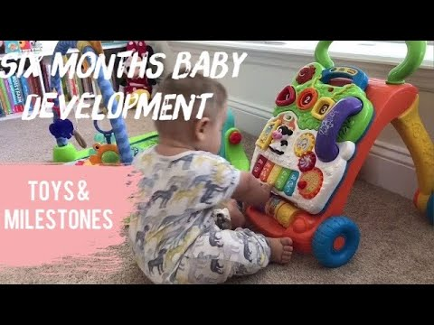 The 9 Best Toys for 7-Month-Olds of 2020