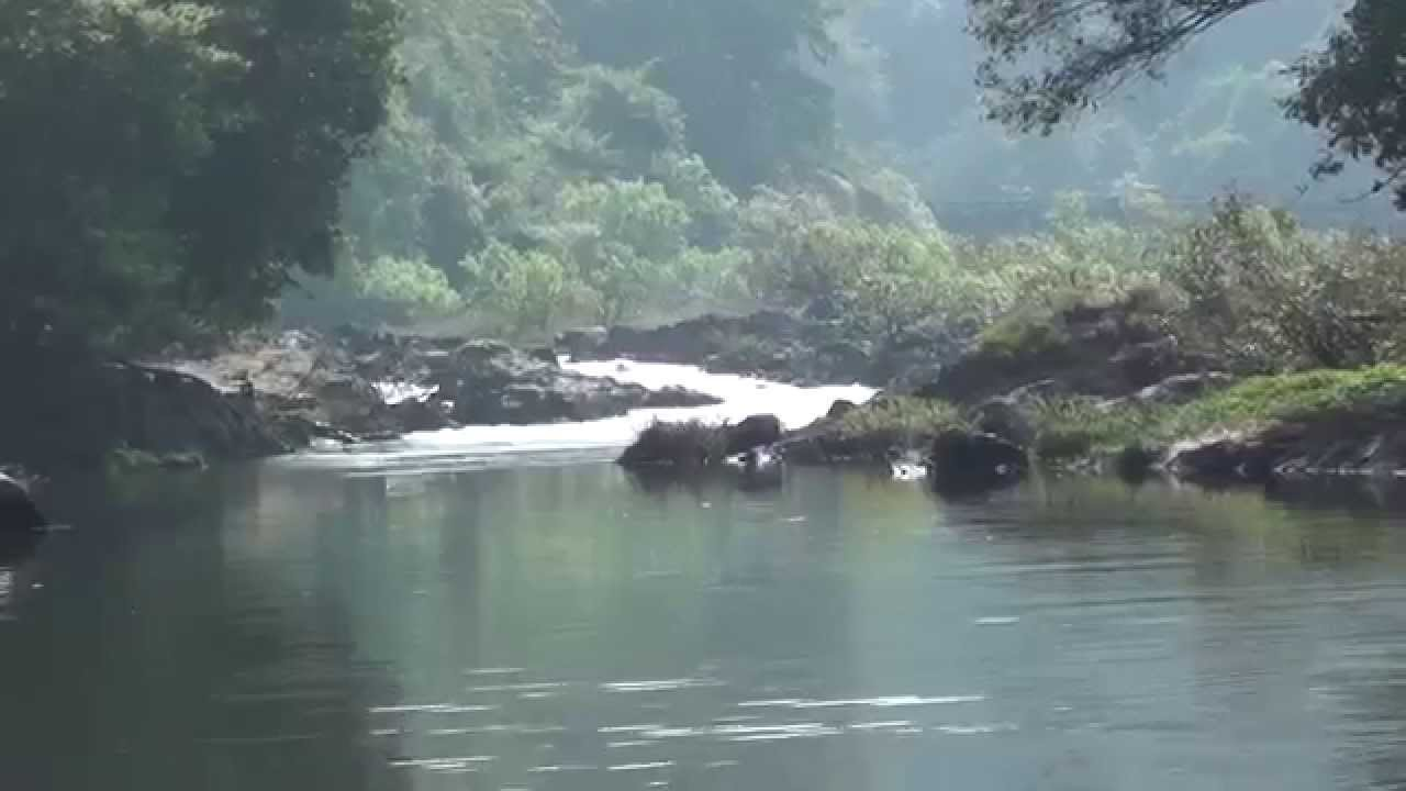 Netravathi River A Beautiful View And A Beautiful Place To Swim And Bath Near Dharmasthala Youtube