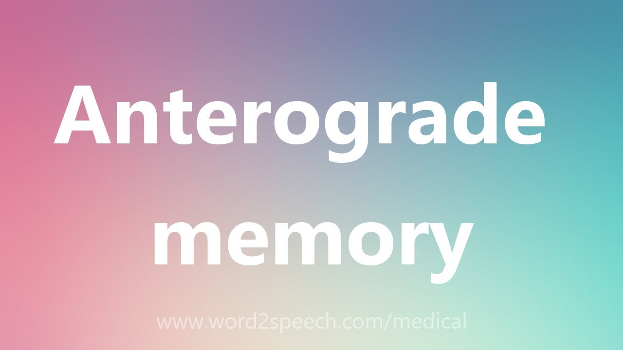 anterograde amnesia summary Many medical experts have cited memento as featuring one of the most realistic and accurate depictions of anterograde amnesia in the history of motion pictures.