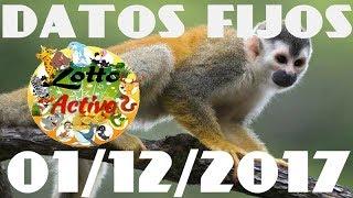 LOTTO ACTIVO DATOS FIJOS  01/12/2017 blue19