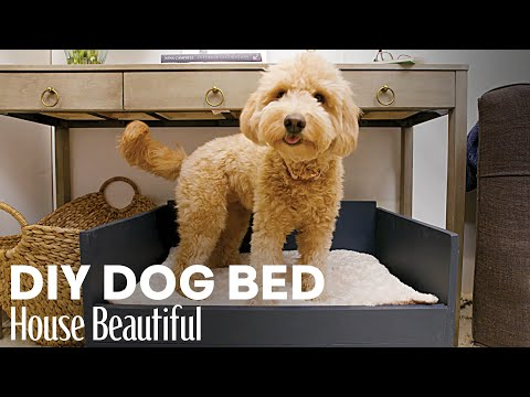 How To Make A Simple But Chic Dog Bed | House Beautiful