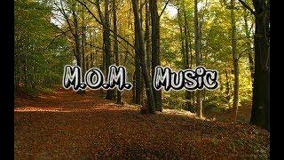 M.O.M. RADIO   vánoční songy!!