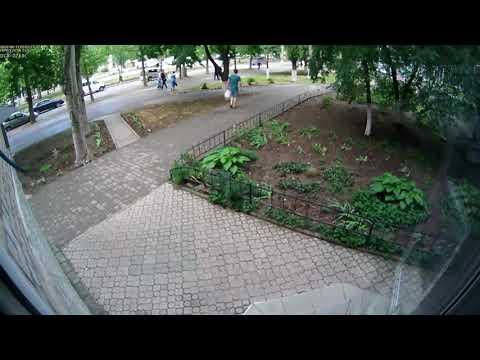ПН TV: В Николаеве внедорожник сбил женщину на пешеходном переходе