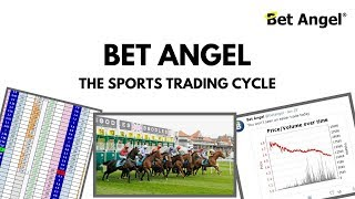 How to trade the sports cycle and profit - Bet Angel