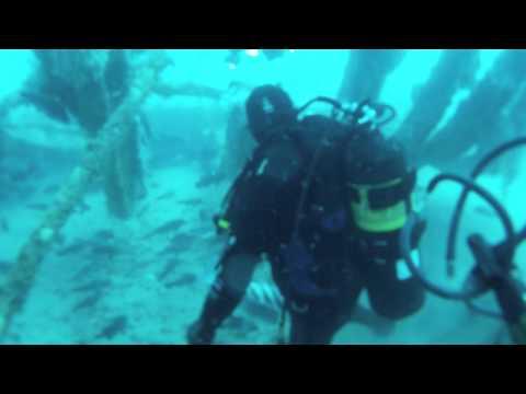 Betsy Ross Dive II Jan 2013