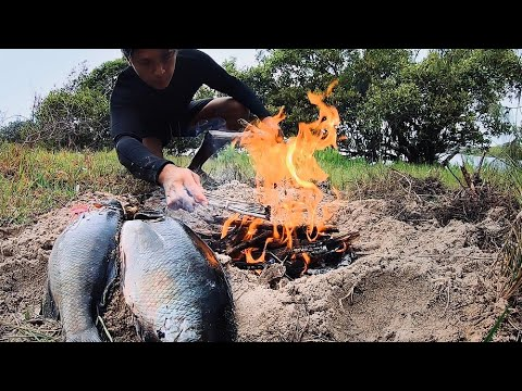 Primitive Cooking Fish On Coals! Pole Spearing Catch & Cook