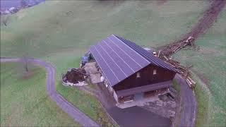 Reform Muli Winter 2017 2018 Holzen Farming in Switzerland