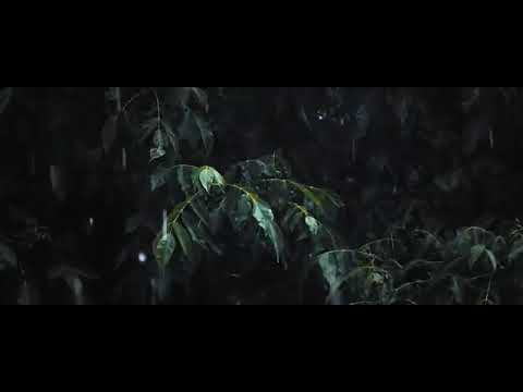 Bolona Keno Tumi Bohudur Mp3 Romantic Top Bangla Song